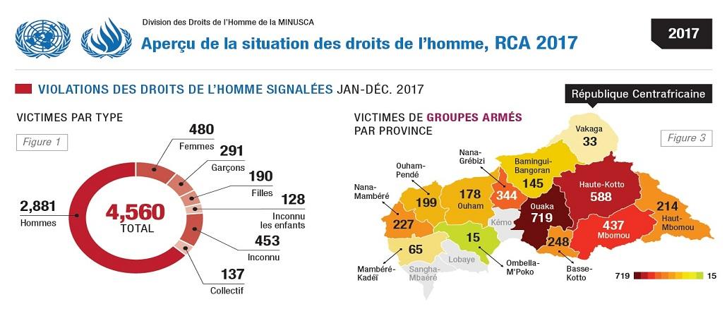 Aperçu de la situation des droits de l'homme, RCA 2017